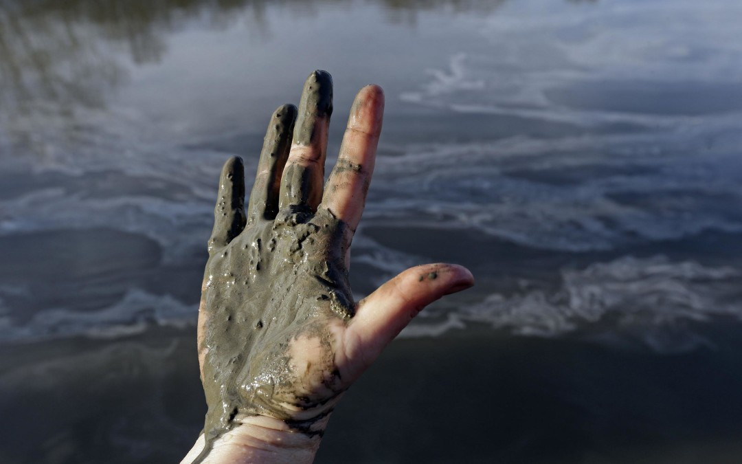 What The Heck Is Going On In Raleigh Re: Coal Ash? Some Answers