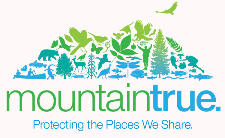 mountaintrue_logo_tag_12.14_750x460 (1)
