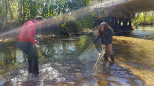 Alex Rodriguez and Laura-Faye Weir netting some microorganisms