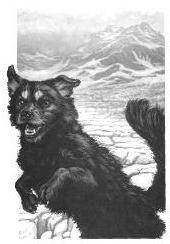 Oct 14: John Muir Among the Animals