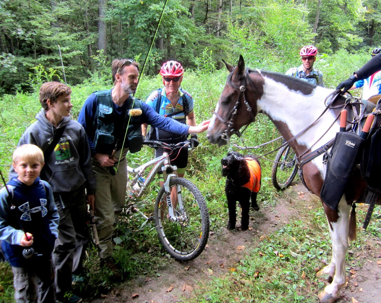 North Mills River Sharing Trails_credit Christine Vigue of Back Country Horsemen of Pisgah_3