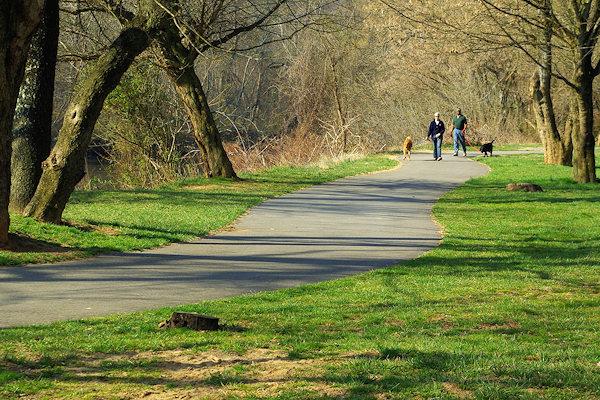 public_parks