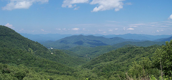 Fires Creek Tract Acquired For Permanent Conservation In Nantahala National Forest!