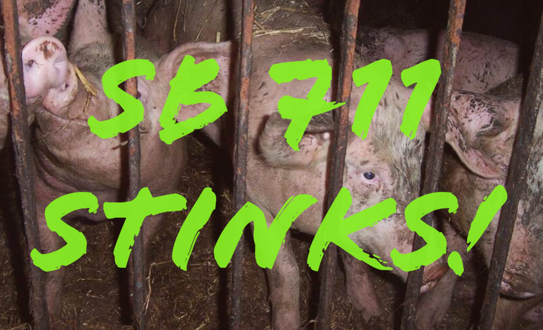 Stop the Smithfield Foods Protection Act