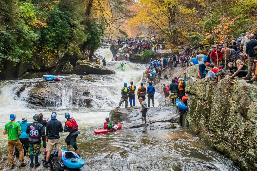 Press Release: Whitewater Kayakers Receive Grant to Save Hemlock Trees in Green River Gorge
