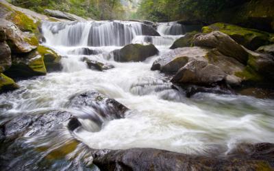 Water and the Draft Plan for Nantahala and Pisgah National Forests