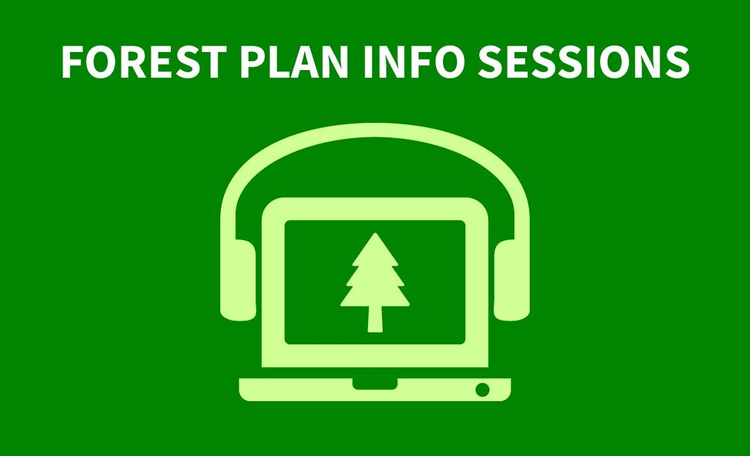 Introducing Topic-Specific Info Sessions on the Nantahala-Pisgah Forest Management Plan