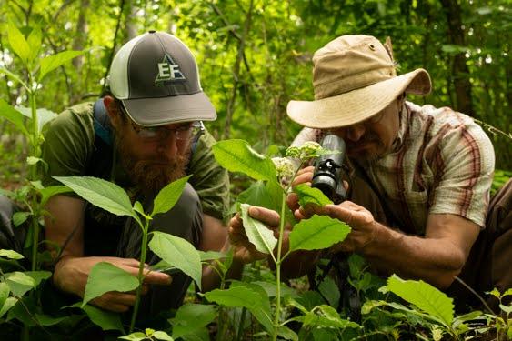 2020 BioBlitz Documents over 1,100 Species