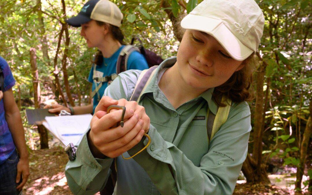 MountainTrue Launches BioBlitz to Crown Champion of Biodiversity in WNC